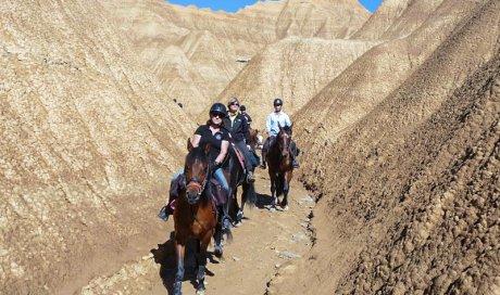 Stage d'équitation Cambounet-sur-le-Sor