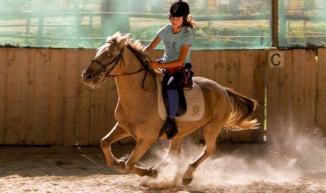 Cours d'équitation Cambounet-sur-le-Sor